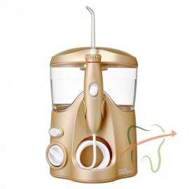 Waterpik WP-108 E2 Ultra Gold